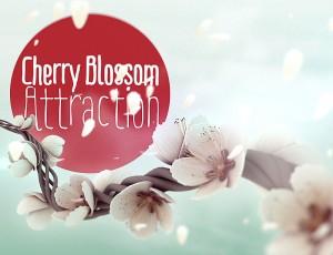 Buy Paris Duty Free – Cherry Blossom